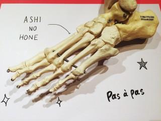 ashinohone1